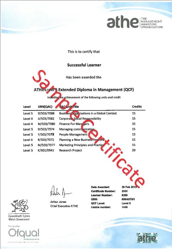 Sample undergraduate cerificate